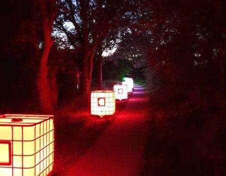 Midnight_Walk_Assen_decor_ledtank_ibc_tank_ledtank.nl_14